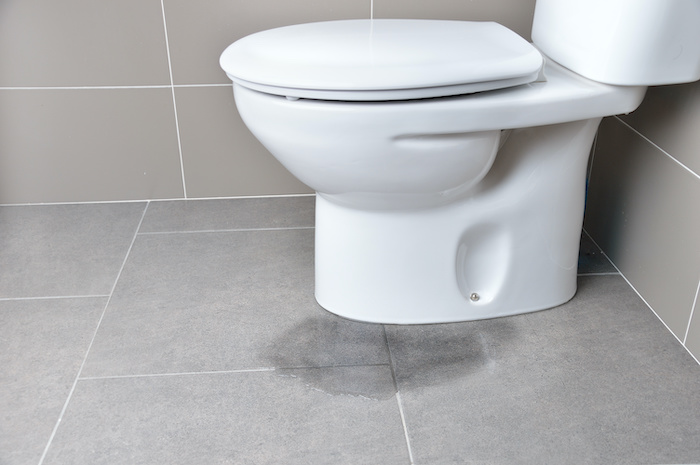 6 Steps to Fix a Toilet Leaking at the Base (+ Prevention Tips)